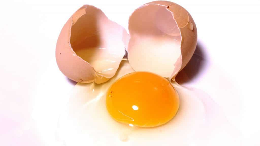 Eggs and Gout Image