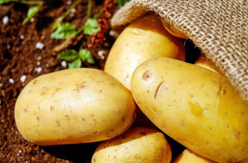 Potatoes and Gout: Are Potatoes OK With Gout?