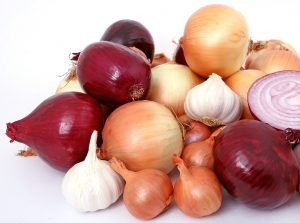 Onions and Gout