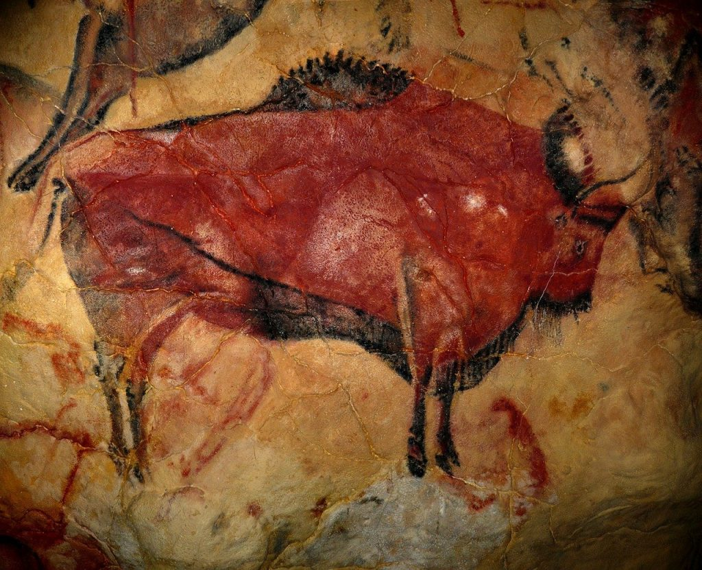 The Paleo Diet and Gout