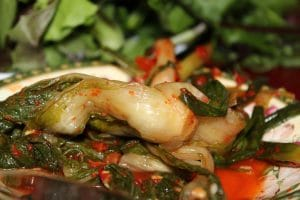 Fermented Foods and Gout